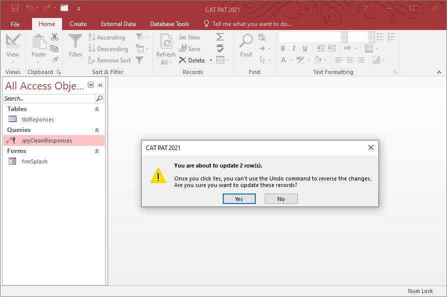 Running a Microsoft Access Update Query.